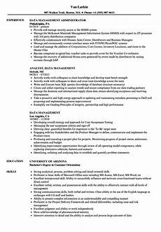 Database Management Resume Data Management Resume Samples Velvet Jobs