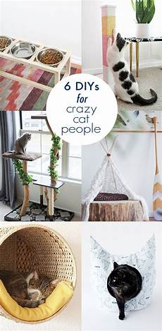 6 diys for cat meals for homeless cats