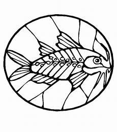 Malvorlagen Fische Quest Fische 00239 Gratis Malvorlage In Fische Tiere Ausmalen