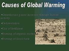 Causes And Effects Of Global Warming Essay Cause Effect Essay Global Warming