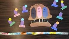 Translation Science Translation Manipulative Model Teaching Biology Biology