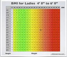 Body Mass Index Chart For Kids Body Mass Index With Health Risk Charts And Illustrations