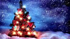 Free Desk Light Christmas Tree With Lights 1366x768 Wallpaper