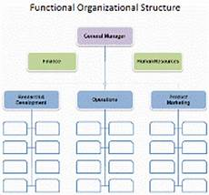Small Business Organizational Structure What Is The Best Organization Structure For Small Business