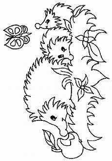hedgehog coloring pages coloringpages1001