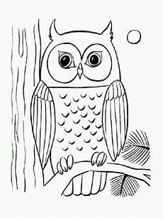 Vogel Malvorlagen Terbaik Eule F 252 R Kinderzimmer Baum Malvorlage Eule Vogel