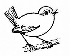how to draw birds 2 the graphics