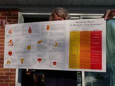 Scientific Chart Of German New Medicine Gnm Scientific Chart Diagram Chart Diagram Scientific