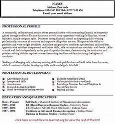Cv Personal Statement Examples Finance Cv Profile Example Finance Buy Original Essays Online