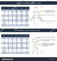 Gant Women S Size Chart Womens Jerseys Pants Size Chart Measurements Stock Vector