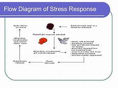 Stress Response Flow Chart Stress Amp The Nervous System Living Chiropractic