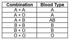 Blood Type Heredity Chart Understanding Genetics