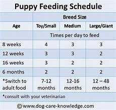 Puppy Food Chart By Age Labrador Puppies Feeding Chart Dogs Breeds And