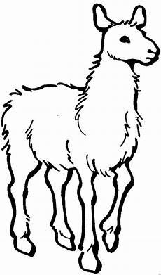Ausmalbilder Tiere Lama Einfaches Lama Ausmalbild Malvorlage Tiere