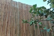 stuoie di canne stuoie bambuseto