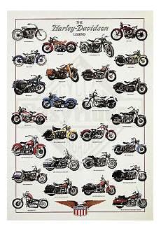 Harley Davidson Models Chart The Harley Davidson Legend Poster Motorcycle Chart Bike
