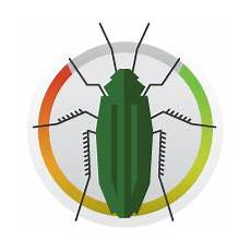 baygon mosquito and fly killer