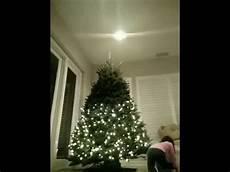 How To Put Christmas Lights How To Put Up Christmas Tree Lights Youtube