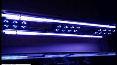 T5 Hybrid Reef Light Hybrid T5 Led Lighting Upgrade Saltwater Tank Coral Reef