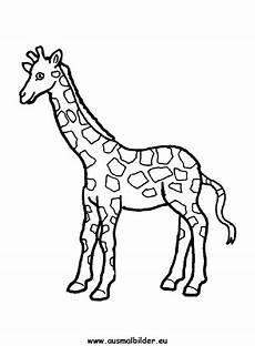 Ausmalbilder Drucken Giraffe Ausmalbilder Giraffe Giraffen Malvorlagen