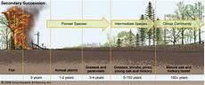 Secondary Succession Ecological Succession Definition Amp Facts Britannica Com