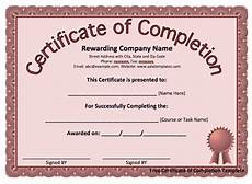 Completion Certificate Sample 13 Certificate Of Completion Templates Excel Pdf Formats