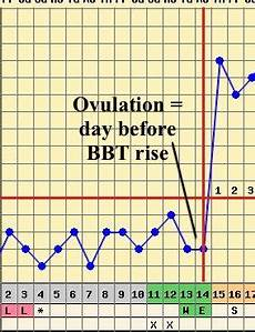 Bbt Charting For Dummies Pin By Ashleigh Meagher On Ttc Fertility Chart