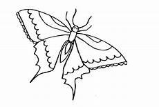 Malvorlagen Insekten Ausmalbilder Insekten Free Ausmalbilder
