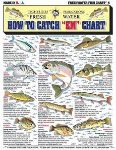 Today S Fishing Chart 17 Best Images About Teach Your Kids Fly Fishing Lures