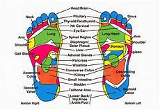 Reflexology Chart Left Foot Foot Chart About Reflexology
