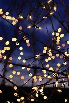 Artsy Fairy Lights Lights December Pinterest Lights Wallpaper And Artsy