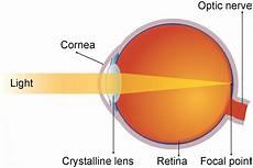 How Light Enters The Eye 2 Light Reaching The Retina From Www Sharper Visions