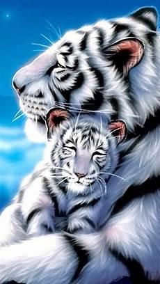 tiger wallpaper iphone 7 white tiger wallpaper so adorable iphone wallpaper