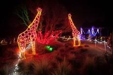Dallas Zoo Hours Lights Zoolights Fresno Chaffee Zoo