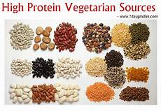 Protein Diet Chart Vegetarian Indian Low Calorie High Protein Indian Diet To Lose Weight Veg