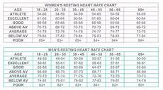 Normal Human Pulse Rate Chart How Dangerous Is A High Blood Pulse Rate Quora