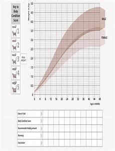Average Cat Weight Chart Kitten Growth Chart From Hill S Kitten Growth Chart