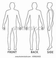 Outline Of Human Body Front And Back Man Outline Stock Images Royalty Free Images Amp Vectors