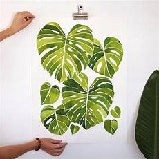 Monstera Deliciosa Light Monstera Deliciosa Climbing To The Light All Finished And