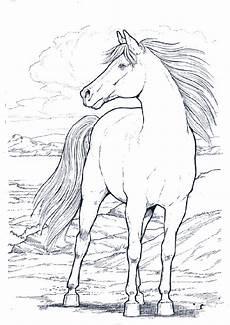 ausmalbilder malvorlagen ausmalen pferde 22