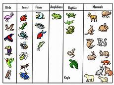 Animal Chart For Kindergarten Basic Animal Classification For Kids Print For First