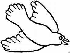 Malvorlage Vogel Fliegend Vogel Fliegend Unten Ausmalbild Malvorlage Tiere