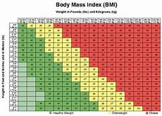 Bmi Guidelines Bmi Chart Why It S A Bad Idea To Trust It Huffpost Life