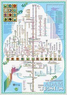 Adam And Family Chart A Magnificent Poster Showing The Genealogical Chart Of The