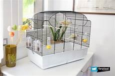 gabbie per canarini da preparare la gabbia per la degli uccellini