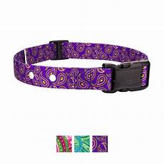 Country Brook Design Dog Collars Country Brook Design Replacement Fence Receiver Dog Collar