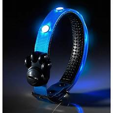 Dog Led Light Super Bright Led Dog Collar Auraglow Led Lighting
