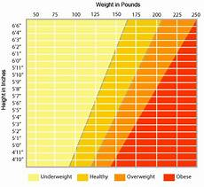 Healthy Height And Weight Chart A Free Height Weight Chart Download Healthy Weight