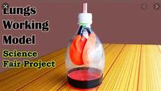 How To Create A Science Project Best Science Working Model For Class 7 Schoolproject In