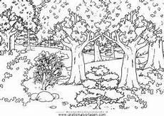 paesaggio bosco gratis malvorlage in diverse malvorlagen